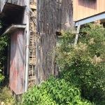 ご近所は空家が迷惑!空き家問題が日本の街を滅ぼす?