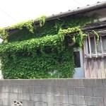 3件に1件が空家!不動産空き家列島日本の現状